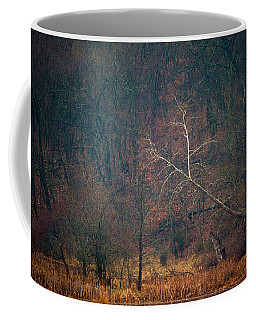 Sycamore Inclination Coffee Mug