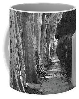Sycamore Walk-grayscale Version Coffee Mug