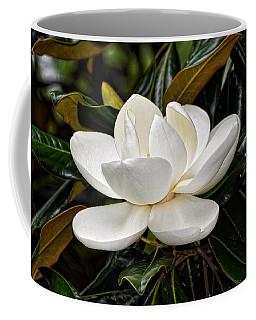 Symbol Of A Southern Summer Coffee Mug