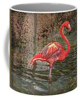Coffee Mug featuring the photograph Symbol Of Florida by Hanny Heim