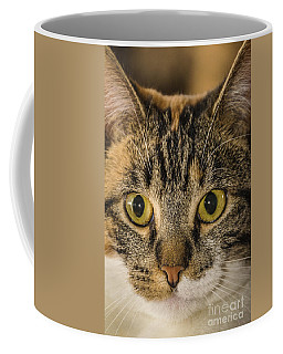 Symmetrical Cat Coffee Mug