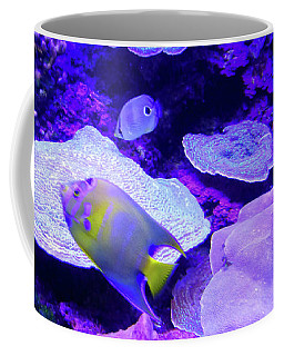 Coffee Mug featuring the photograph Ta Purple Coral And Fish by Francesca Mackenney