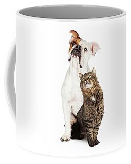 Tabby Cat And Bulldog Together Looking Up Coffee Mug