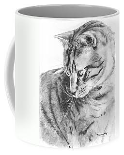 Tabby Cat In Profile Drawing Coffee Mug by Kate Sumners
