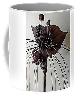 Tacca Chantrieri Coffee Mug