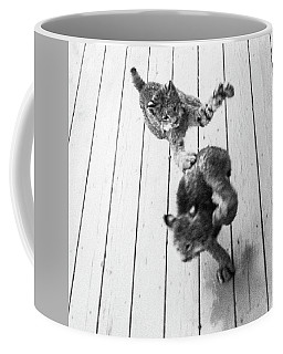 Coffee Mug featuring the photograph Tag Youre It by Tim Newton