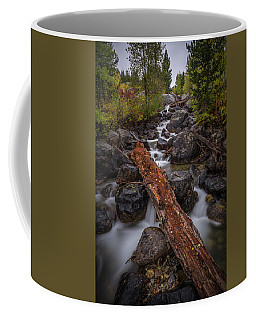 Coffee Mug featuring the photograph Taggert Creek Waterfall Log by Scott McGuire