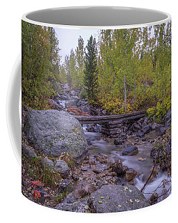 Coffee Mug featuring the photograph Taggert Creek Waterfall by Scott McGuire