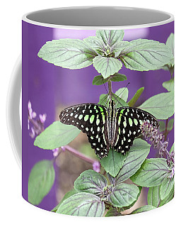 Tailed Jay Butterfly In Puple Coffee Mug