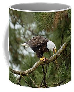 Tails You Lose Coffee Mug