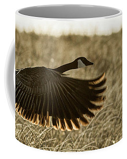 Coffee Mug featuring the photograph Taking Flight by Brad Allen Fine Art