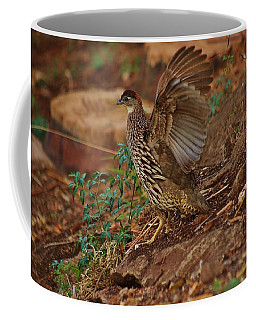 Taking Flight Coffee Mug by Craig Wood