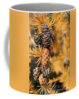 Tamarack Larch Tree In The Fall  Coffee Mug