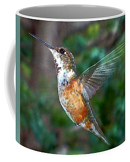 Tan Hummingbird Coffee Mug by Joseph Frank Baraba