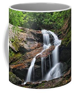 Upper Dill Falls Coffee Mug