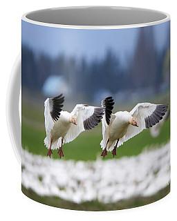 Tandem Landing  Coffee Mug