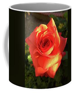 Tangerine Dream Coffee Mug