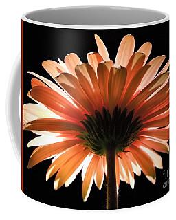 Tangerine Gerber Daisy Coffee Mug