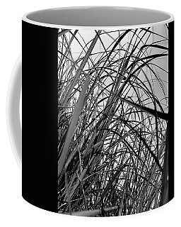 Coffee Mug featuring the photograph Tangled Grass by Susan Capuano
