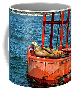 Coffee Mug featuring the photograph Tanning Sea Lion On Buoy by Mariola Bitner