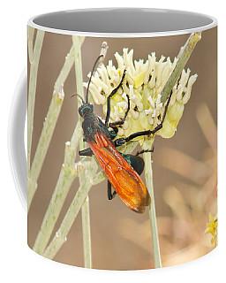 Tarantula Hawk Coffee Mug by Sean Griffin
