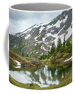 Coffee Mug featuring the photograph Tarns Of Nagoon 209 by Tim Newton