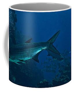 Tarpin Coffee Mug