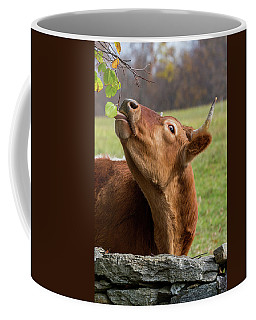 Coffee Mug featuring the photograph Tasty by Bill Wakeley