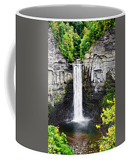 Taughannock Falls View From The Top Coffee Mug