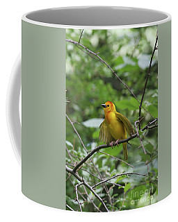 Taveta Golden Weaver #3 Coffee Mug