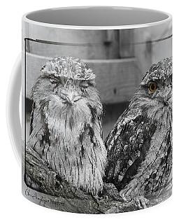 Tawney Frogmouths Coffee Mug