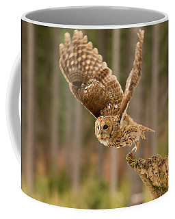 Tawny Takeoff Coffee Mug