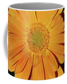 Coffee Mug featuring the photograph Teary Flower by Cindy Manero