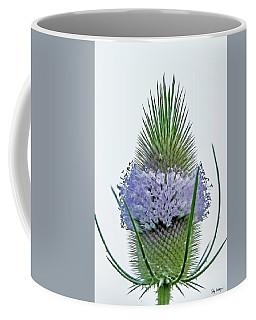 Teasel On White Coffee Mug