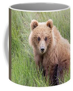 Teddy Bear Cuteness Coffee Mug by Jack Bell