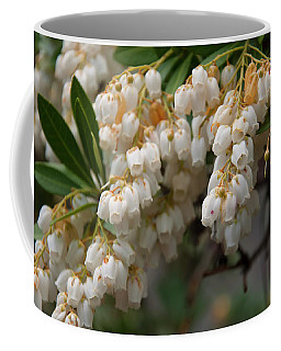 Coffee Mug featuring the photograph Temple Bells Andromedia by Chris Flees