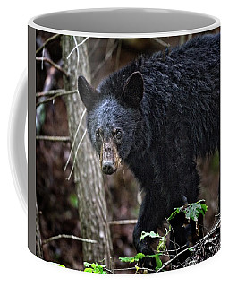 Tennessee Black Bear Coffee Mug