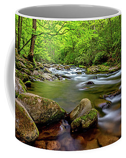 Coffee Mug featuring the photograph Tennessee Stream by Christopher Holmes