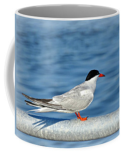 Tern Coffee Mug