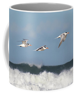 Terns In Flight Coffee Mug