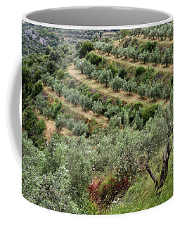 Terraced Groves Coffee Mug by Shirley Mitchell