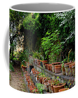 Terracotta Pots In The Botanical Gardens Of Pisa Italy Coffee Mug