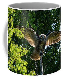 Testing The Wings Coffee Mug