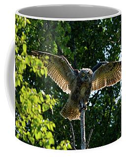 Testing The Wings Coffee Mug