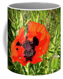 Teton Poppy Coffee Mug