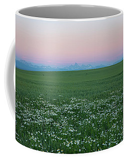 Tetons With Daisies Coffee Mug