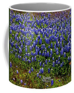 Texas Bluebonnets #0484 Coffee Mug