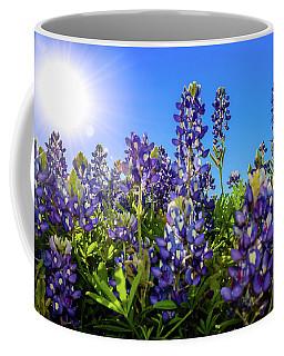 Texas Bluebonnets Backlit II Coffee Mug