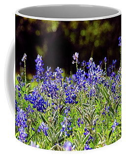Texas Bluebonnets IIi Coffee Mug