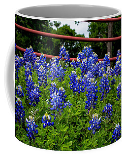 Coffee Mug featuring the photograph Texas Bluebonnets In Ennis by Robert Bellomy